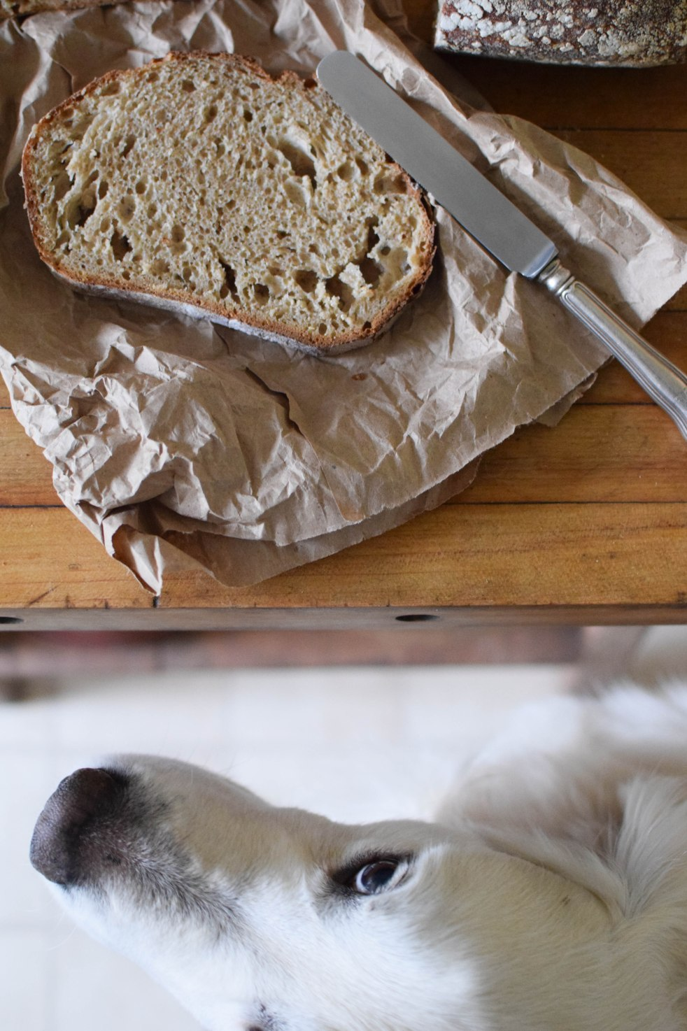 No-Knead Bread with Instant Yeast - abagofflour.com-12