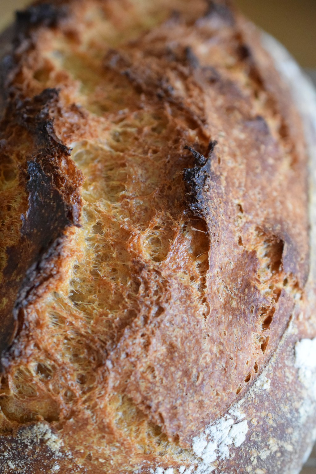 No-Knead Bread with Instant Yeast - abagofflour.com-2